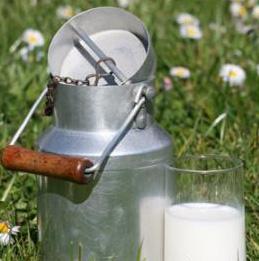 Fleur de lait BIO